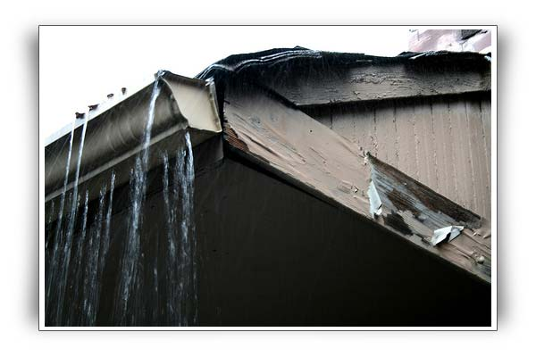 All gutters and drainpipes are susceptible to wear and tear, and weather extremes really speed up the process. Even more importantly, once the gutters and gutter guards become damaged or worn, they fail to help drain water from your home or business property's foundation. And once that's damaged, you're liable to find yourself behind significant repair costs - or worse!